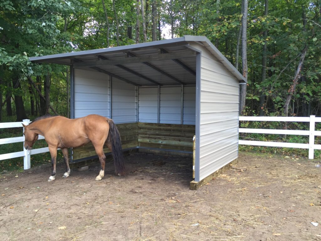 Horse Shed in Conklin