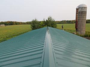 Metal-vertical-roof